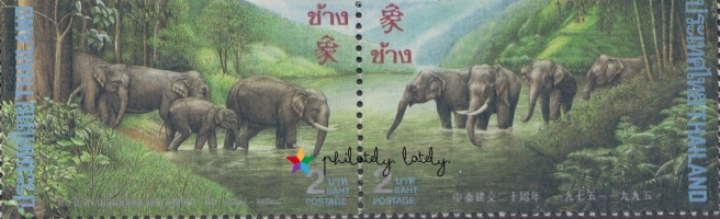 033_Thailand_Elephants.jpg
