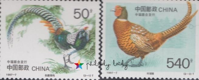 054_China_Birds.jpg
