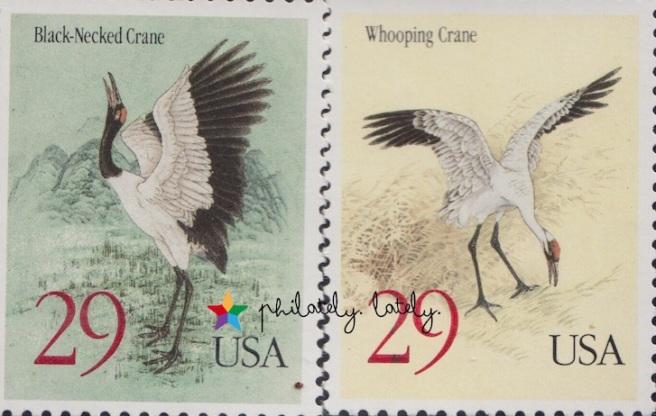 056_USA_Birds.jpg